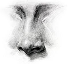 Nose Drawing, How to Draw a Nose - How to Draw Noses - Step by Step, -tutorial  with thanks to proko, How to draw Face, Resources for Art Students , CAPI ::: Create Art Portfolio Ideas at milliande.com, Art School Portfolio Work Art Portfolio, Pencil Art Drawings, How To Draw Nose, Drawing Face, Art Drawing Ideas, Painting Art Tutorials, Art Painting Tutorial, Pencil Inspiration Drawings, Drawing How To