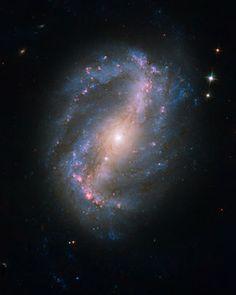 Barred Spiral Galaxy NGC 6217