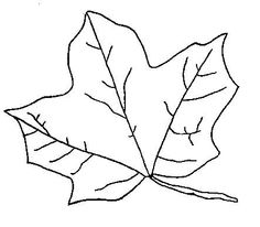 Fall Leaves Colouring Sheets
