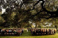 3bed3e89b9b8c90eff3aeee4c3d6ee7b San Antonio Wedding Photographers, Houston Wedding Photography