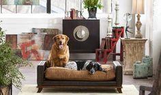 Beau Dog Pet Bed - treasurecombers
