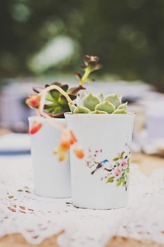 succulents in vintage porcelain // photo by Briana Purser // http://ruffledblog.com/sixties-inspired-texas-wedding