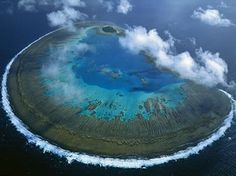 Lady Musgrave Coral Island, Australia