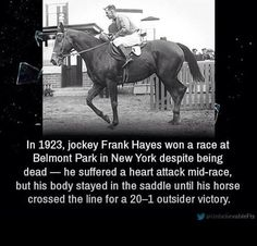 That's a dedicated horse for 'ya.