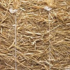 Natural Baling Twine Crafts