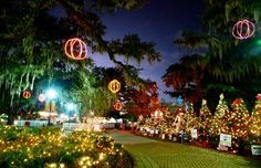 One of NOLA's favorite Christmas traditions! Celebration in the Oaks 2012 | IntheNOLA.com