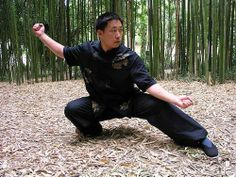 Chen Dragon Emerges from Earth. chen tai chi