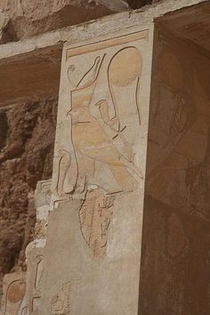 The Hawk of the Egyptian Pharaoh, Hatshepsut, Temple at Luxor