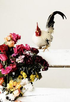 Rooster and bouquet