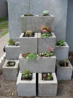 Pinner says: Pepper plants would do awesome in cement containers like this. One pepper to a brick. They would thrive on the extra heat from the concrete.  :[) Simple and inexpensive way to grow herbs or in my case succulents. If you are a crafty person you can mosiac the concrete by using dollar tree gems and stones and applying epoxy. Allow drying time then plant your heart  away.