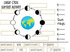 Moon phases sorting activity