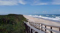 Walk the Beach, Canaveral National Sea Shore