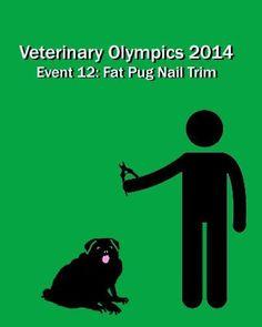 nail, challenges, life, funni, pugs, vet tech, vet olymp, veterinari technician, spot
