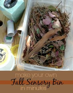 It's Fall! Time for a fun fall sensory bin that you can create in minutes ... just perfect for our toddler friends!