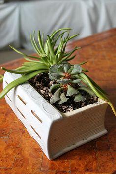 Candle holder turned succulent pot.