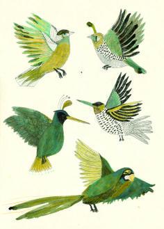 Birds - Kat Frank.
