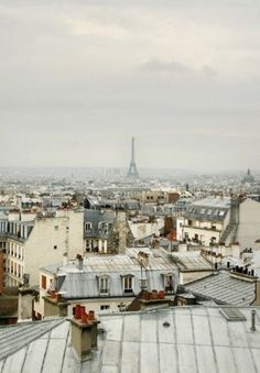 roof top view of paris