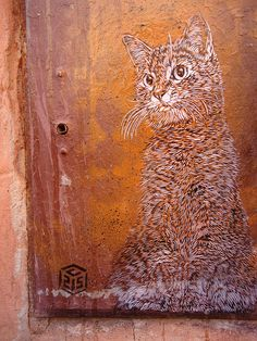 ginger cat, by C215 -  street art in  Marrakech