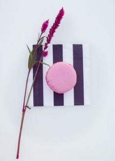 Darling little macaroon favors. Styled shoot by Mayo Event + Design. Photo by Grey Twig Photography. #wedding #macaroon #pink #stripes