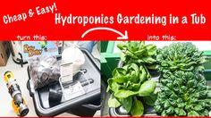 Grow: Foolproof Hydroponic Gardening in a Tub