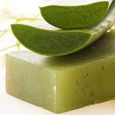 Make your own Aloe Vera soap to soothe irritated skin, with emollient properties that will make your skin look and feel suppler and younger!