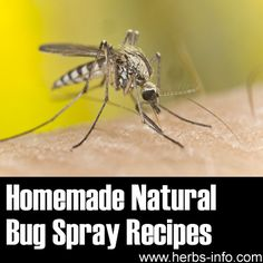 ❤ Homemade Natural Bug Spray Recipes That Work! ❤