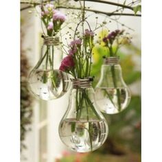 Cool light bulb vases! Recycle and Reuse.