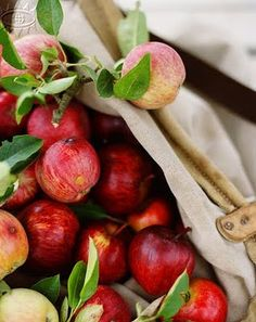 Apple-gathering.
