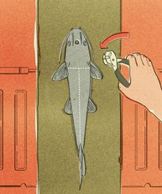 How to Skin a Catfish