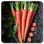 Organic Atomic Red Carrot