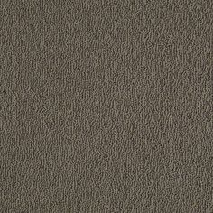 """Caress Collection carpeting in style """"Cottonique"""" color Alaskan Musk - by Shaw Floors"""