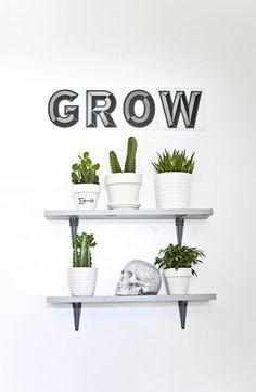 Give plants a little encouragement.