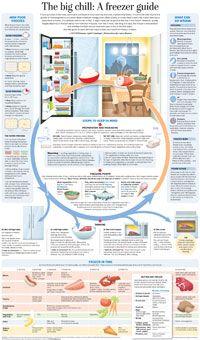 Freezer guide