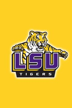 lsu tigers on pinterest ipod touch lsu tigers football