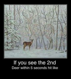 Can you see the 2nd #deer? #Lettersfromsanta http://www.fatherchristmasletters.co.uk/google