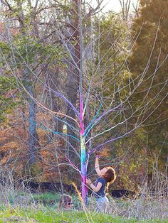 Tree Trunk Painting- from chalk. This is temporary and should not hurt the tree! Let the chalk soak in water then paint it on!