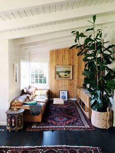 Textiles and leather and natural- potted plant, leather vintage sofa, Persian tugs, vaulted mid century ceiling
