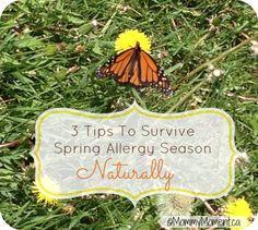 3 tips to survive spring allergy season naturally.