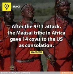 africa facts, sweet, fun fact, stuff, interest, funni, african gift, beauti, maasai tribe