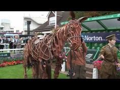 War Horse Puppet at Sandown Park, Esher