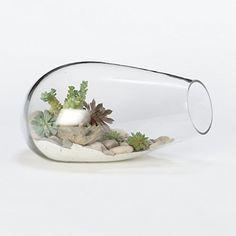 Bubbled Terrarium #shopterrain