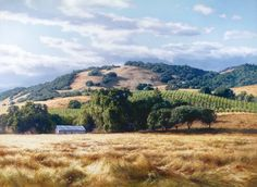 California Wine Country by June Carey