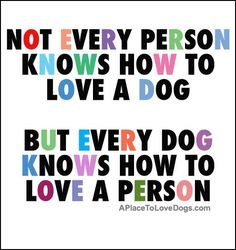 Not every person  knows how to love a dog  But every dog knows how to love a person | Quote