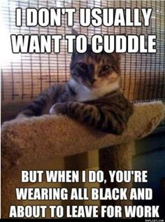 I Don't Usually Want To Cuddle...