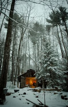 Small cabin in the woods in winter