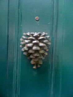 pinecone - so cool