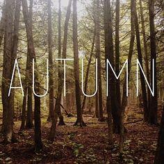 //autumn//