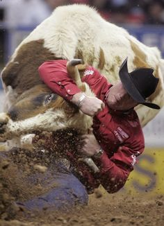 National Finals Rodeo in Las Vegas.