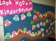 owl classroom theme - Bing Images