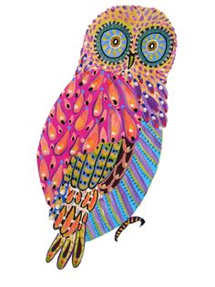 another 'saucer-eyed' owl